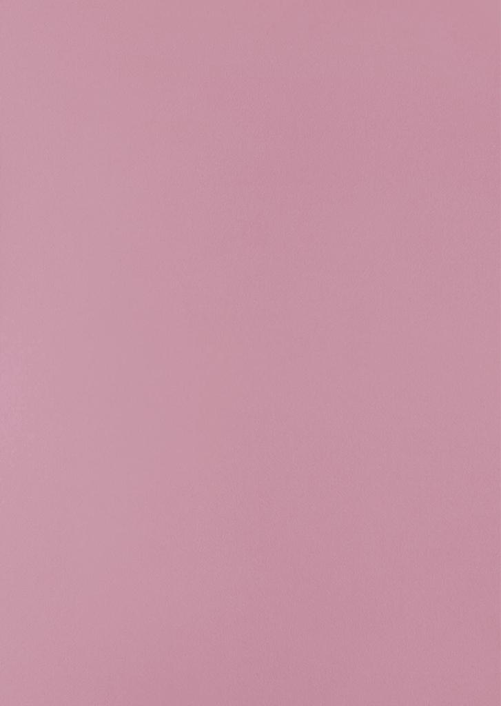 HPL Specials - 161 Roze Suede