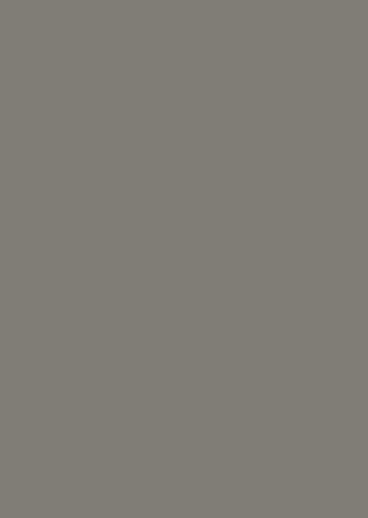 HPL Specials - 9852 AFX Grijs